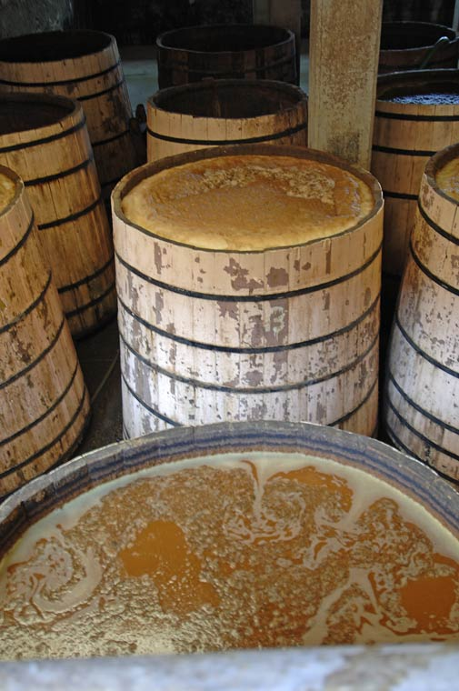 Whiskey Fermentation