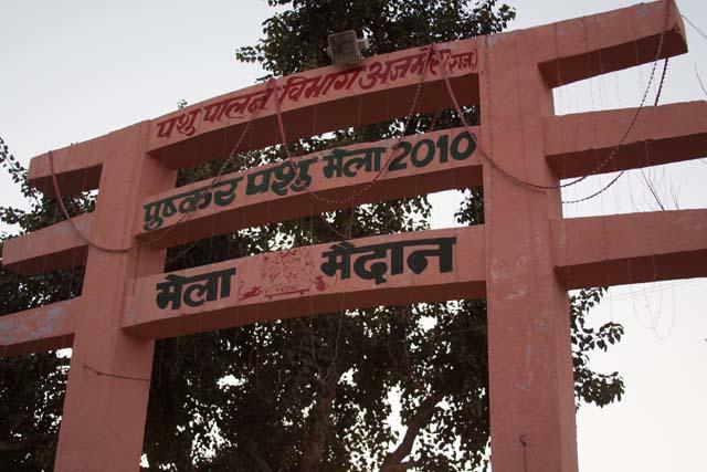 42 2010 Nov Pushkar